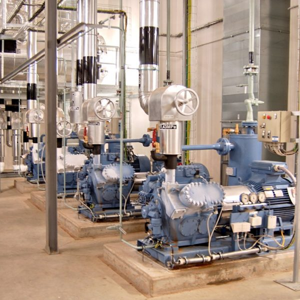 Compressor Oils